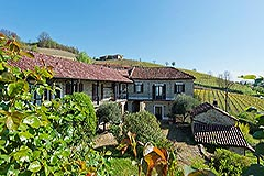 Country Estate with Vineyard and Swimming Pool - Restored Langhe Stone farmhouse comprising of 2 houses, 3 apartments ,  swimming pool and a vineyard.